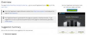 wpseo google pagespeed insights 300x120 wpseo google pagespeed insights