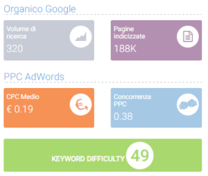 Panoramica Seozoom Keyword