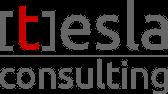 logo tesla consulting